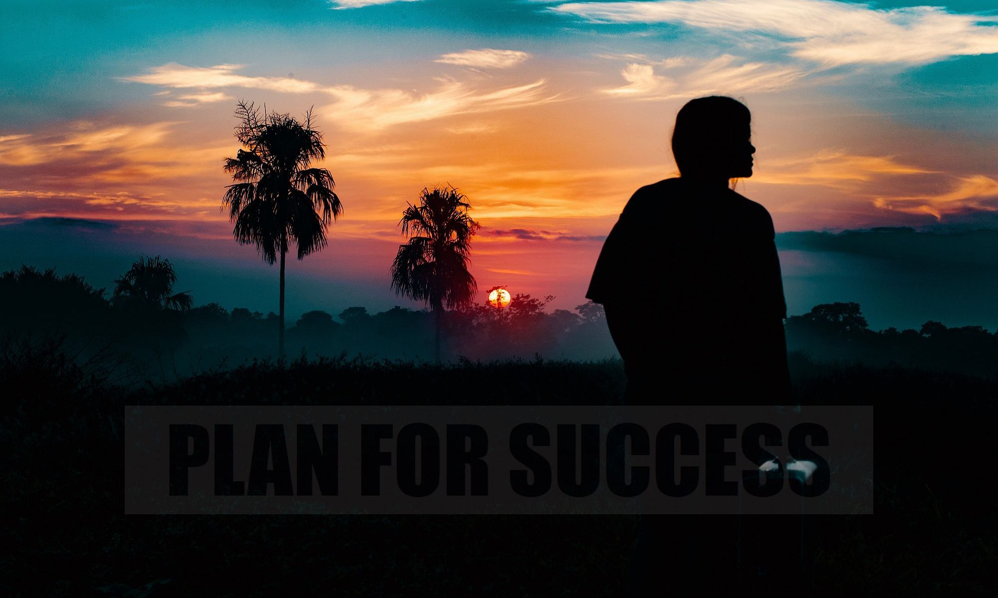 Conscious-Creation-to-Succeed-Metaphysical-Life-Plan-for-Success-2000