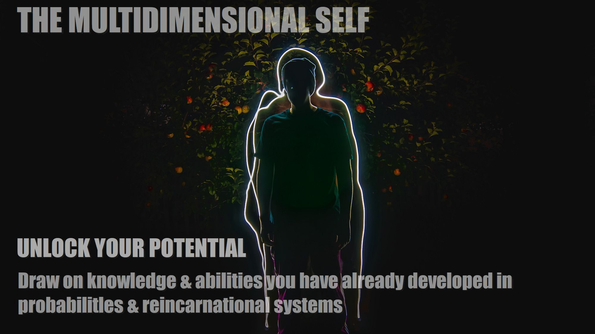 multidimensional-self-how-to-draw-on-the-power-of-the-entity-soul-spirit-inner-mind-j-2000