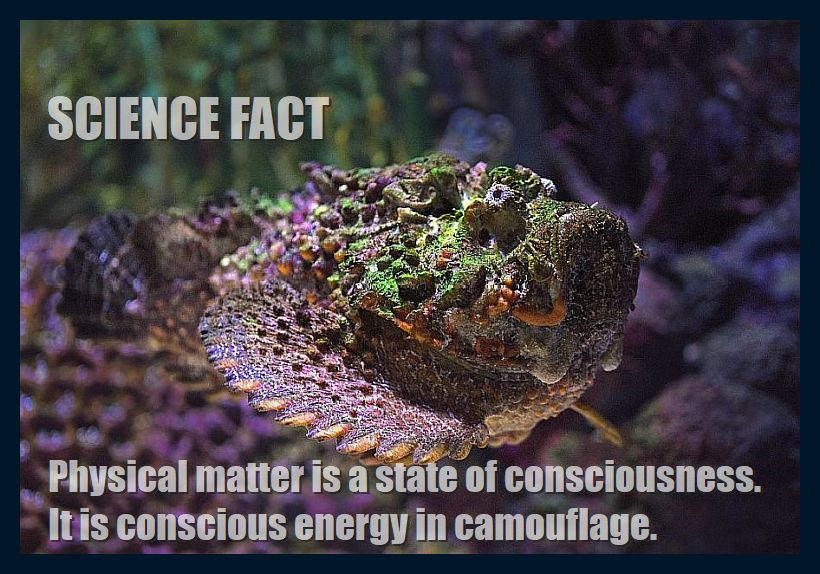 physical-matter-is-consciousness-820