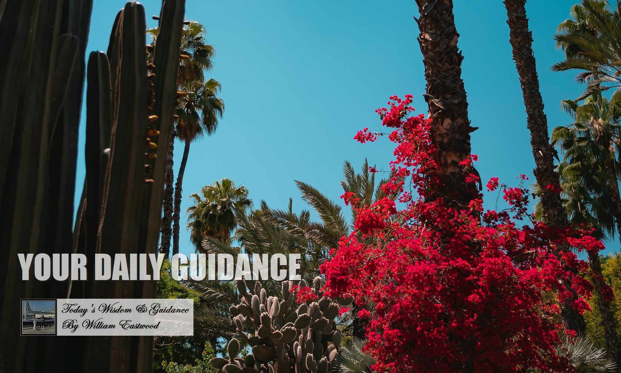 Daily-guidance-feature-image-3e-2000
