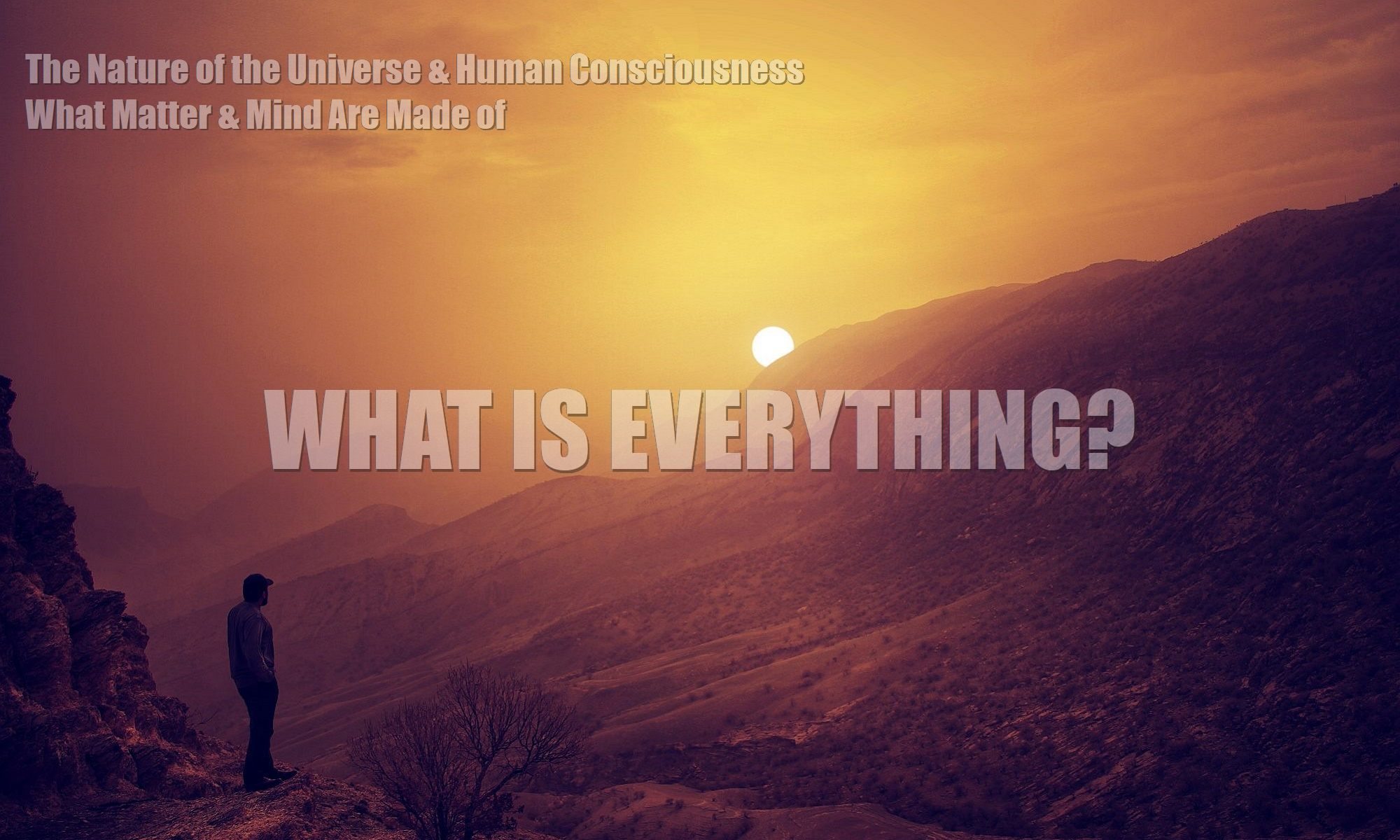 what-is-everything-the-nature-of-the-universe-human-consciousness-what-matter-mind-are-made-of-fields-zpf-2000