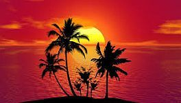 Consciousness is as beautiful as the sunset
