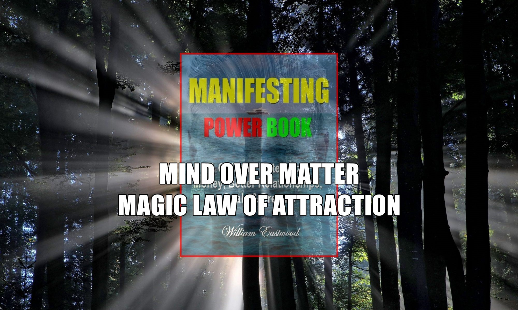 Magic light in forest depicts magic law of attraction & mind over matter
